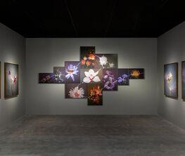 A+ Contemporary at West Bund Art & Design 2018