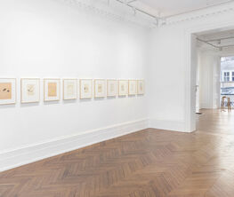 Sigmar Polke Objects: Real and Imagined