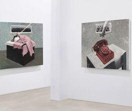 2020 Zhang Linhai's Solo Exhibition :Fairy Tale