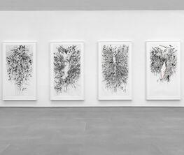 Julie Mehretu: Paintings & Works on Paper