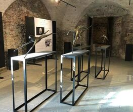 The Flying Horses - Solo Exhibition