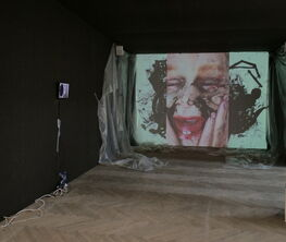 Cecilia Hillström Gallery at CHART 2021