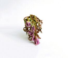 Valerie Hegarty: Bloom & Gloom