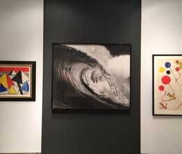 Antoine Helwaser Gallery at Art Miami 2016