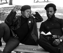The Summer of '68: Photographing the Black Panthers