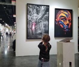 Arte Fundamental at Art Palm Beach 2018