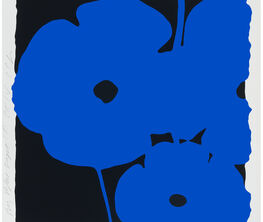 Donald Sultan: Flowers