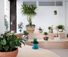 The Planter Show
