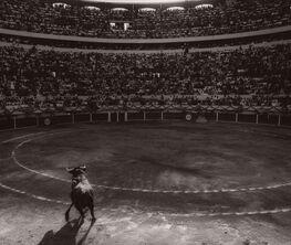 Michael Crouser: Sin Tiempo