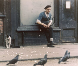 Shirley Baker. A Different Age