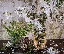 Stilleben und Gartenstücke