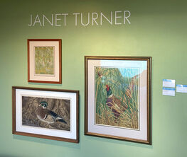 Janet Turner - Pause and Observe