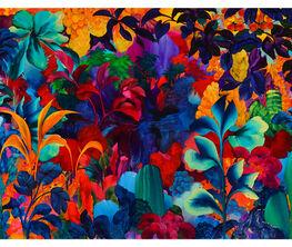 Rewild by Orlanda Broom