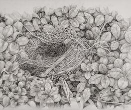 Amelia Hankin Cashin:  A Nest Filled with Hope