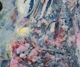 Fluid Crust Surgery by Raquel Quevedo