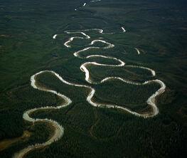 Amazon of the North
