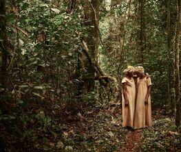 Pieter Henket: Congo Tales