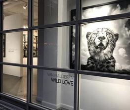 Wild Love by Griet Van Malderen