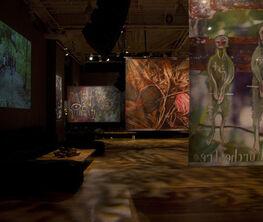 NOMAD TWO WORLDS - HAITI Exhibition (Stephan Weiss Studio, New York, USA)