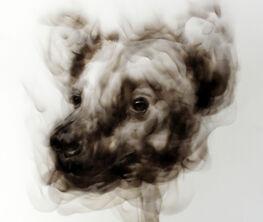 Animal Farm - Diane Victor smoke drawings