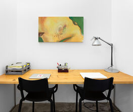 "Valerio Nicolai - ""Birthmarkers"" at Madragoa's office."