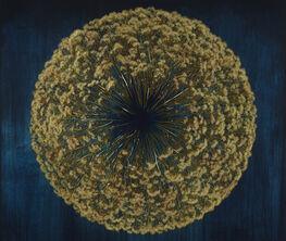 Nature & Structure: Mayme Kratz, Marie Navarre, Kim Cridler