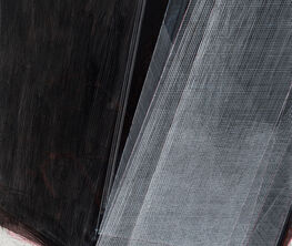 Galería La Caja Negra at ARCOmadrid 2020