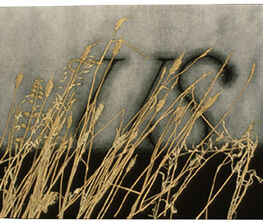 ON TIME: Prints by Ed Ruscha