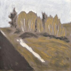 Charles Meanwell, 'Birch', 2017