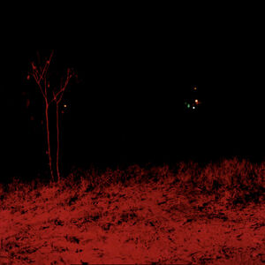 Dayanita Singh, 'Dream Villa (44) (red tree)', ca. 2006-2008