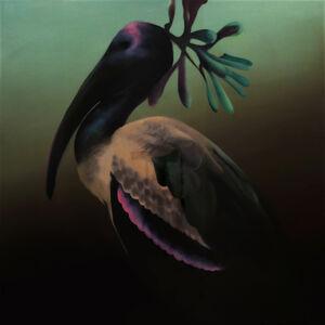 Manu Muñoz, 'Abdim's stork', 2017
