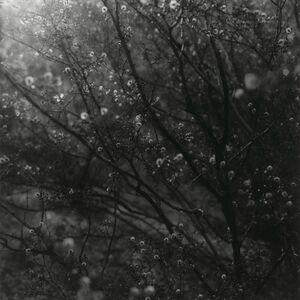 Ken Rosenthal, 'Illuminated', 2010