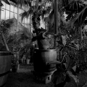 Amelia Stein, 'Pot & Tub', 2012