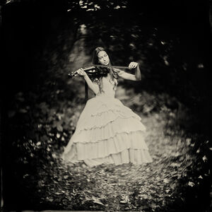 Alex Timmermans, 'Poetry in Motion'