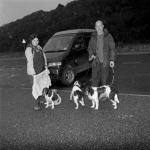Ian Hoskin, 'Bailey, Poppy and Moss', 2015