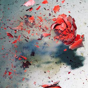 Sharon Neel-Bagley, 'Boiling Crash Number 4', 2015