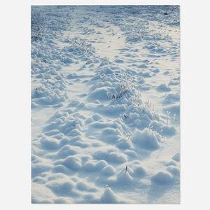 Torbjørn Rødland, 'White Field', 1999