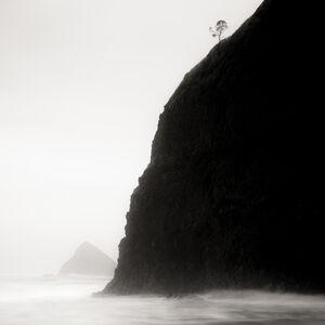 Jeffrey Conley, 'Lone Tree and Headland, Oregon', 2016