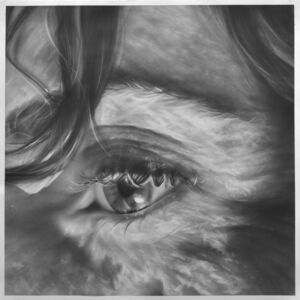 Melissa Cooke, 'Plunge: Night Look', 2012