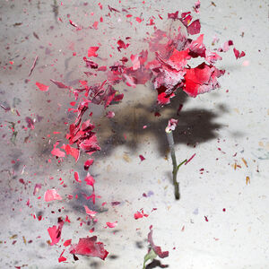 Sharon Neel-Bagley, 'Boiling Crash Number 3', 2015