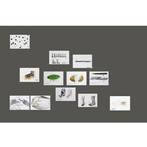 Prasanta Sahu, 'Study: 25022018  (Set of 12 works)', 2018
