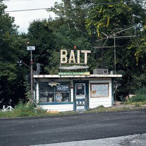 Charles Johnstone, 'Bait, from Route 22', 2007
