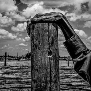Matt Black, 'USA. Allensworth, California. Fence post. Allensworth has a population of 471 and 54% live below the poverty level.', 2014