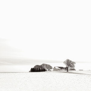 Michael Knapstein, 'Winterscape', 2011