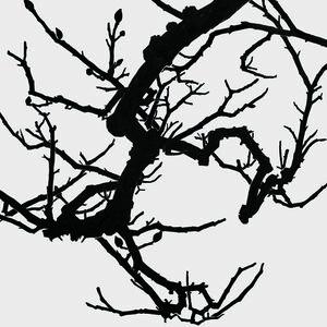 Rieko Hidaka, 'Distance from the Sky XV', 2017