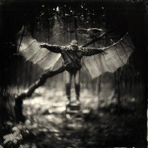 Alex Timmermans, 'Icarus', 2014