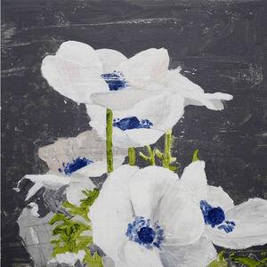 Richard Storms, 'Anemone', 2018