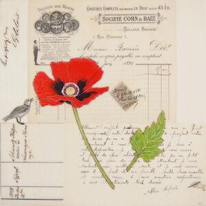 Kenna Moser, 'Red Poppy #5'