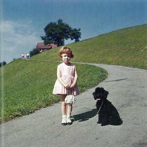 Arnold Odermatt, 'Stansstad', 1963