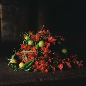Denis Dailleux, 'Nature morte II, marché aux fleurs, Calcutta', 2019
